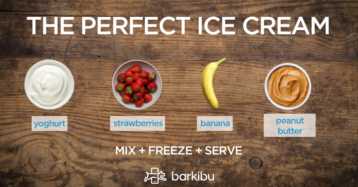 Banana icecream for dogs