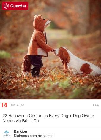 Halloween Costumes For Pets Barkibu No