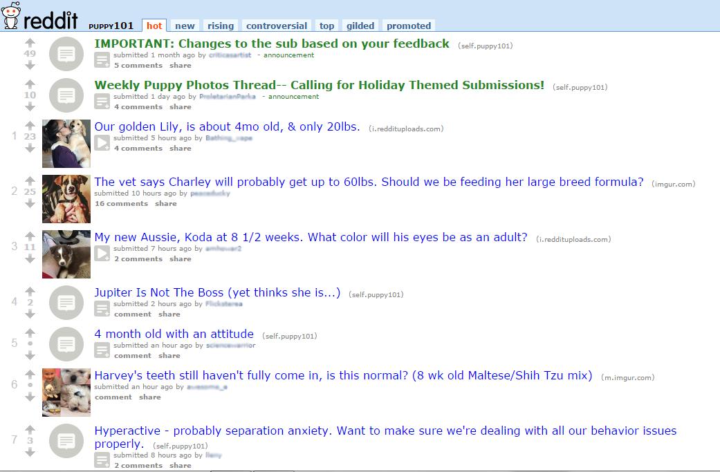 Reddit puppies 101