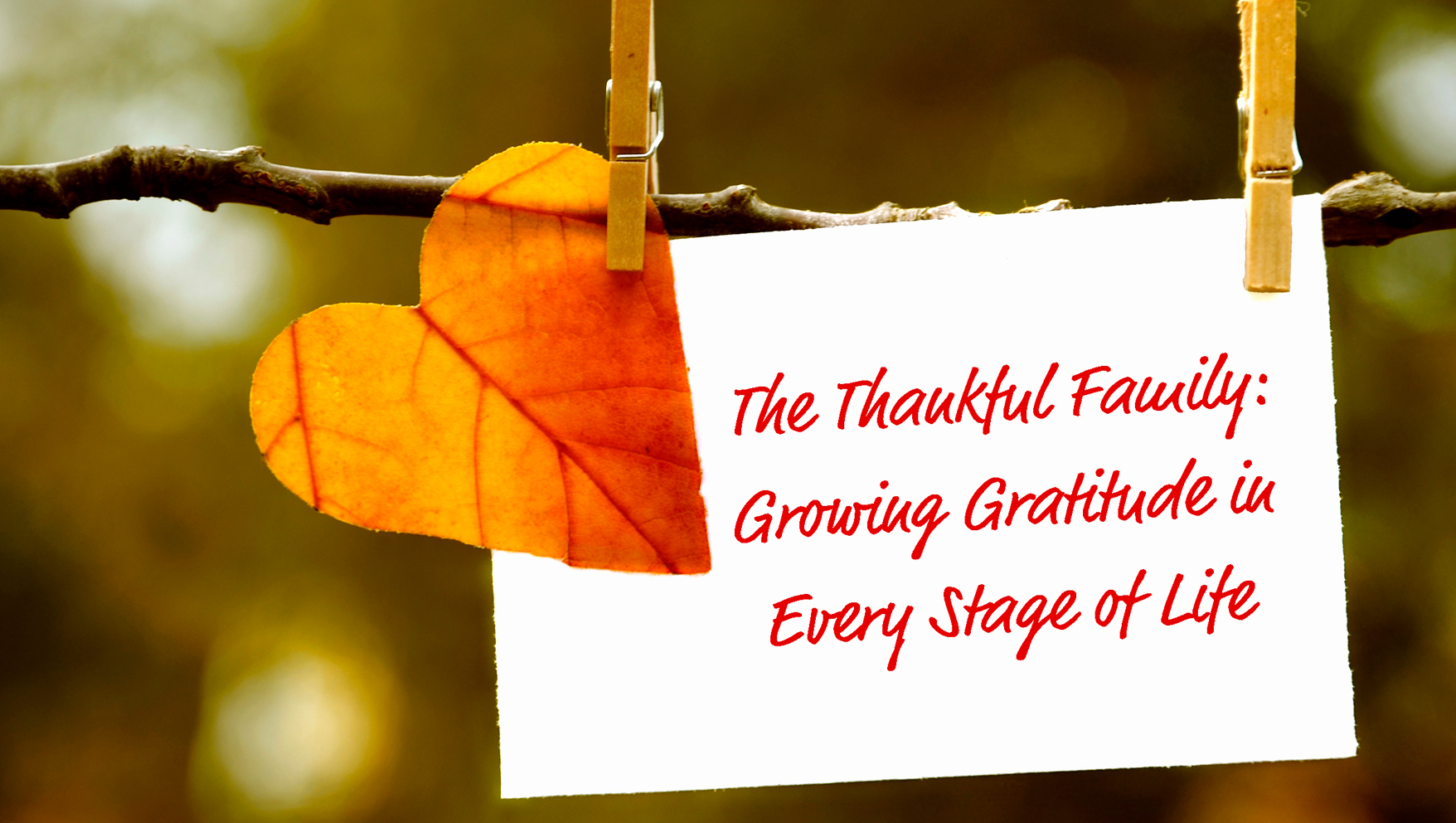 The Thankful Family: Growing Gratitude in Every Stage of Life