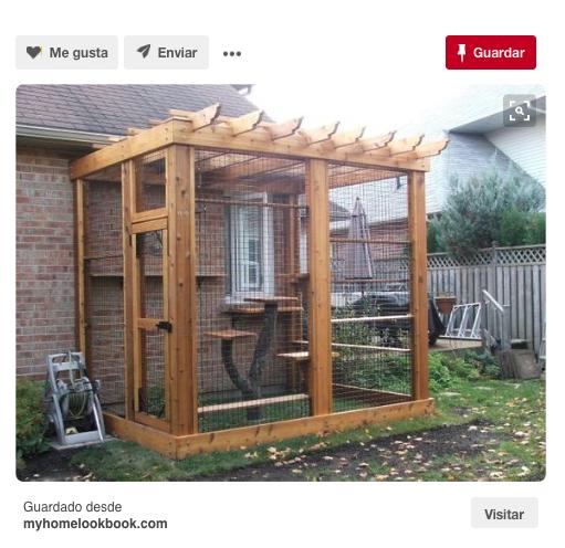 C mo construir un catio barkibu es - Casa gatos exterior ...