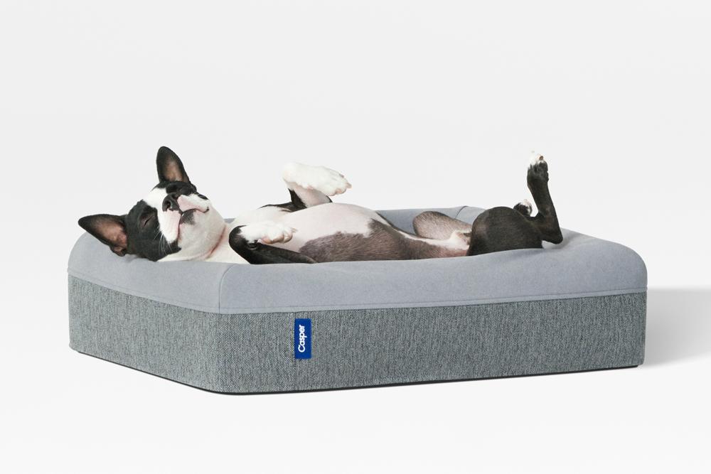 Casper Dog Beds