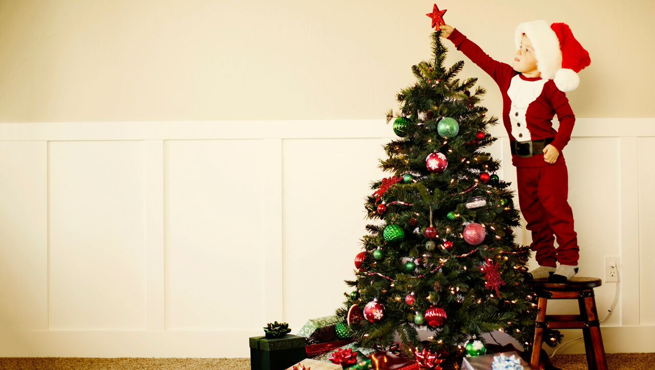 The History of Christmas Trees | Jellytelly Parents